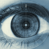 Are Your Eyes Fixed on the Recall Target?